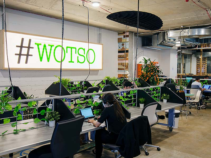 coworking-desks-hire-daily-pyrmont-wotso