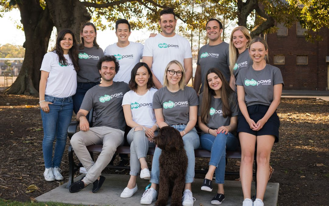 WOTSO Pyrmont – Get To Know The Team At Mad Paws!