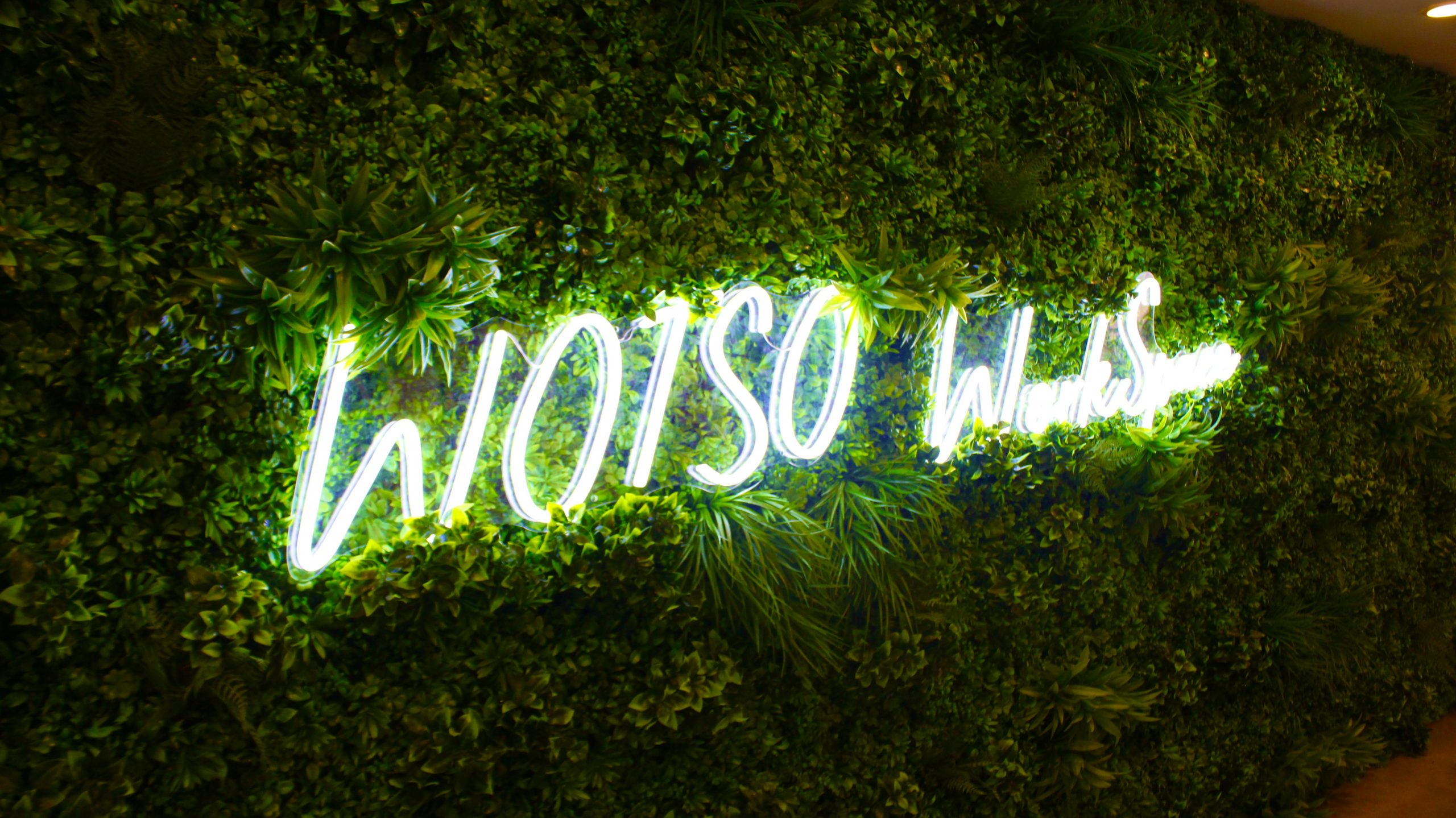 WOTSO Workspace Feature Wall